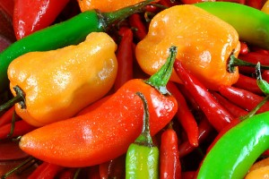 """Have You Got the """"Hots"""" for Hot Peppers?"""